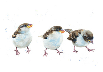 HOST OF SPARROWS PRINT