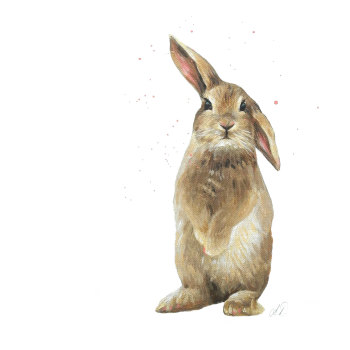 Hot Cross Bunny PRINT