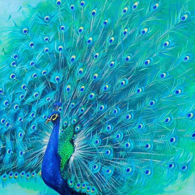 Peacock commission