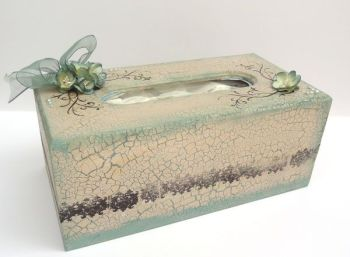 DSC05788 - tissue box - altered - jo sonjas paints - flutterby crafts