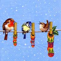 Birds on Wire, 33 x 33cm   (19a)