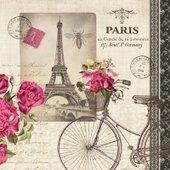 Velo Parisien 25x25   (29b)