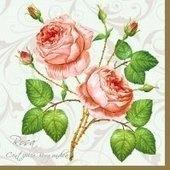 Roses of White 25x25   (8b)