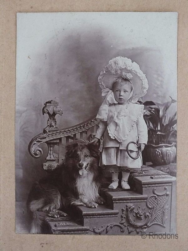 Victorian Portrait Photo, Young Child With Dog - Edwards & Co, Stratford, Forest Gate, East Ham
