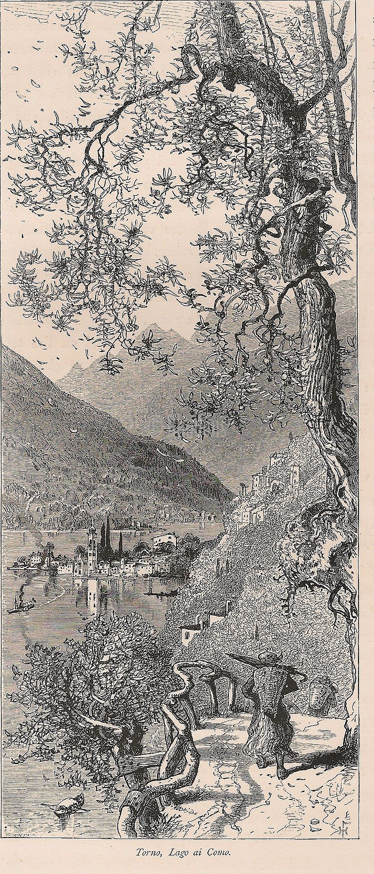 Italy, The Italian Lakes, View Of Torno, Lake Como, Antique Engraving Print