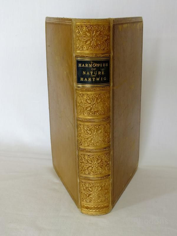 The Harmonies of Nature or The Unity of Creation By D G Hartwig, 1866 First Edition