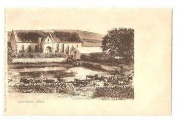 England: Dorset. Abbotsbury Abbey - Raphael Tuck ´County´ Postcard No 216