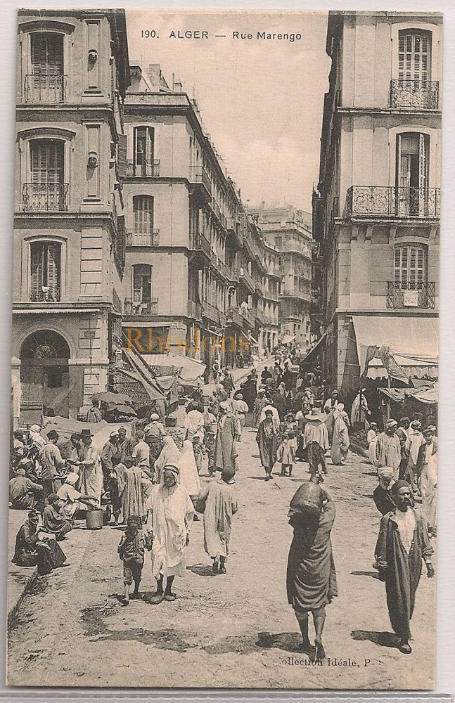 Algeria: Alger, Rue Marengo. Early 1900s Postcard
