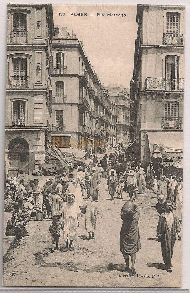 Algeria: Alger, Rue Marengo. Early 1900s Postcard