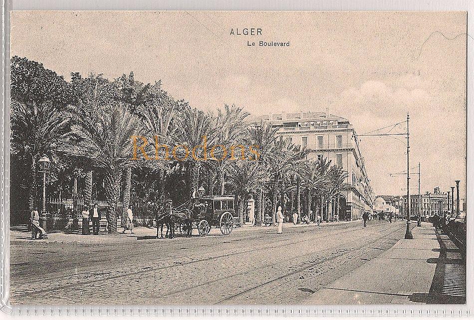 Algeria: Alger, Le Boulevard. Early 1900s Postcard