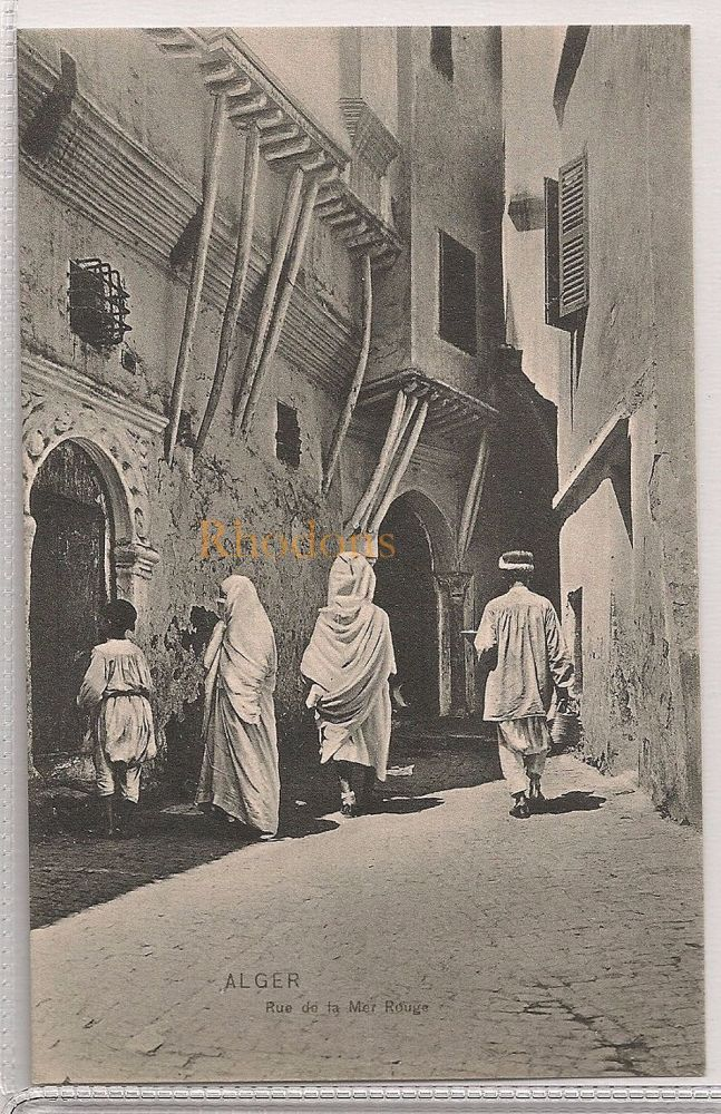 Algeria: Alger- Rue de la Mer Rouge, Early 1900s Postcard