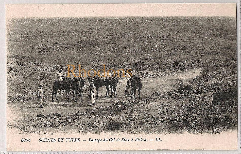 Algeria: Scènes et Types-Caravane, Passage du col de Sfax à Biskra. Vintage Postcard