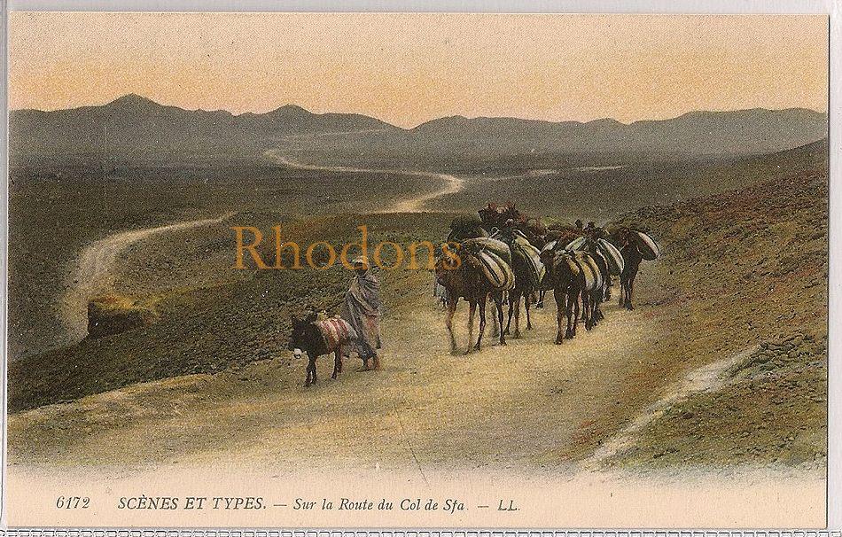 Algeria: Scenes Et Types Sur La Route Du Col De Sfa. Early 1900s Postcard