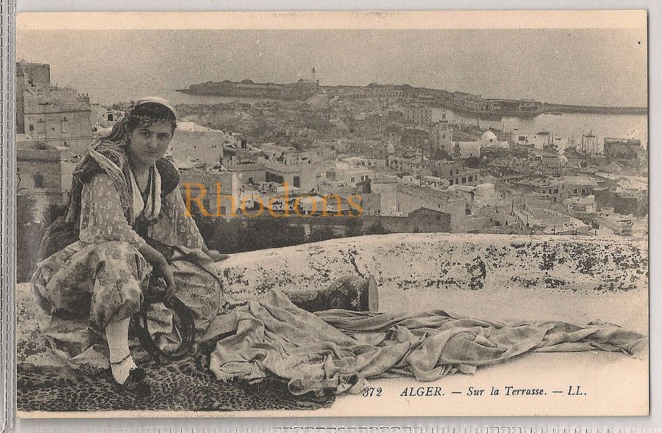 Algeria: Alger. Sur La Terrasse. Early 1900s Picture Postcard