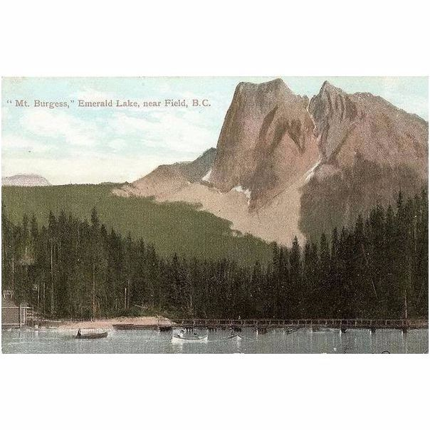 Canada: British Colombia, Mt Burgess, Emerald Lake Near Field B C, Early 1900s Postcard