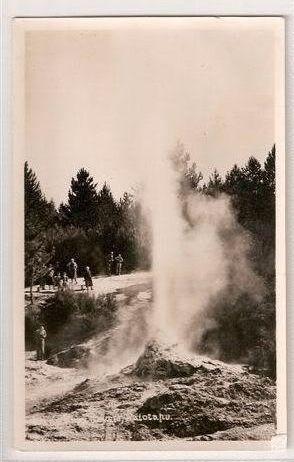 New Zealand: Geyser At Waiotapu. Circa 1930s RP Postcard