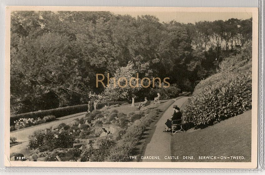 England: Northumberland. The Gardens, Castle Dene, Berwick upon Tweed. Real Photo Postcard
