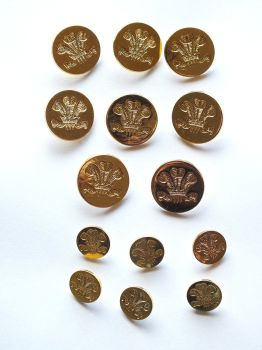 Holland & Sherry Gilt Blazer Buttons, Prince of Wales Feathers, Fleur de Lys
