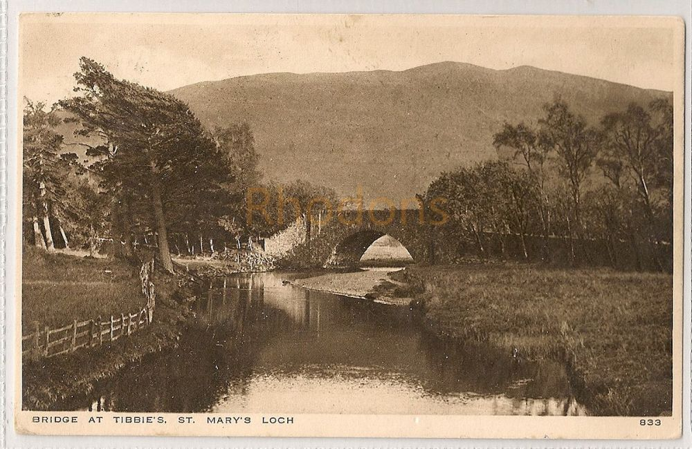 Scotland: Borders. Bridge At Tibbies, St Mary's Loch. 1920s Photo Postcard
