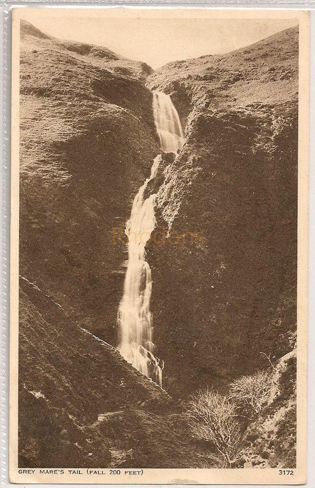 Scotland: Borders. Grey Mares Tail Waterfall. 1950s Photo Postcard