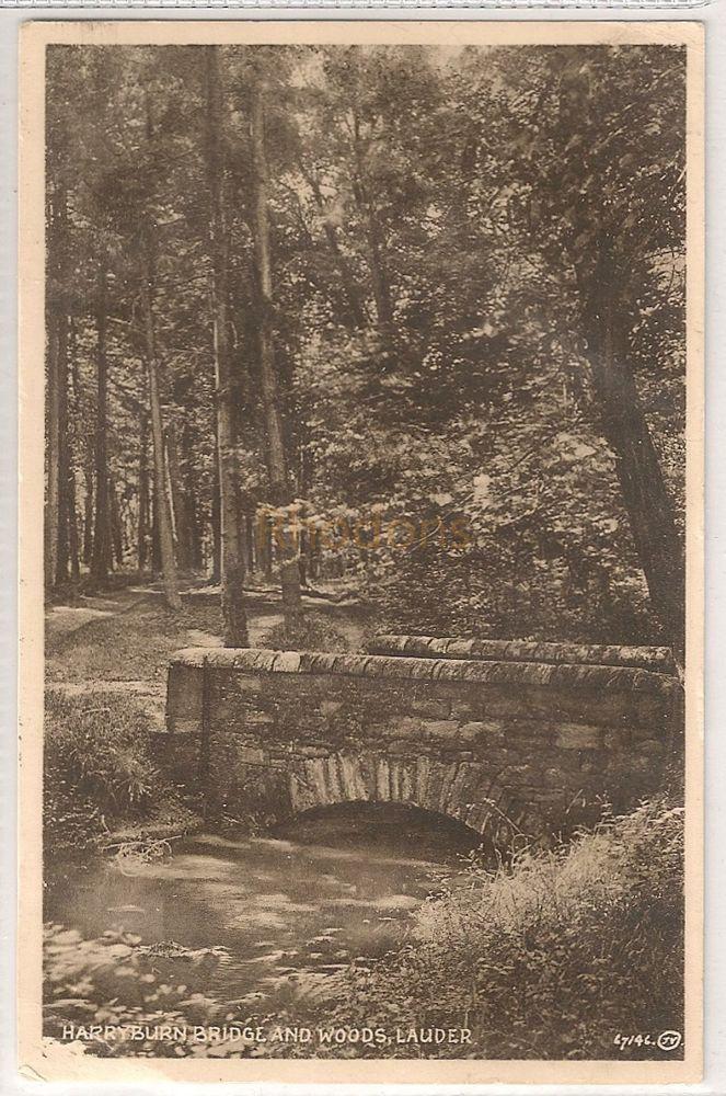 Scotland: Borders. Harryburn Bridge And Woods, Lauder. Photo Postcard. | Recipient Family Name: Wilsher