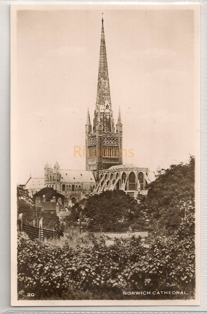Norfolk: Norwich Cathedral. Real Photo Postcard