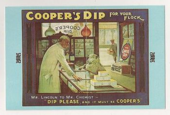 William Cooper, Coopers Dip Advertising, Early 1900s. Nostalgia Reproduction Postcard
