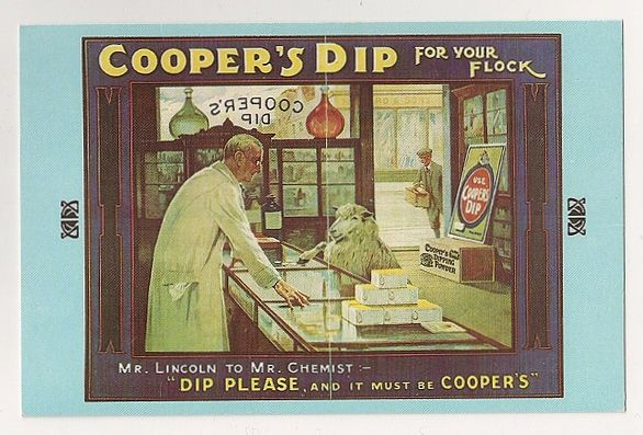 William Cooper, Coopers Dip Advertising, Early 1900s  Nostalgia  Reproduction Postcard