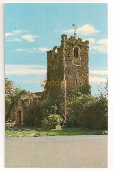 England: Essex. All Saints Church 11th Century Ruins, Colchester Zoo. Colour Photo Postcard