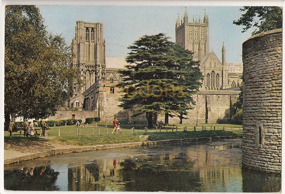 Somerset: Bishops Palace Moat, Wells. Colour Photo Postcard