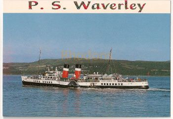 P S Waverley Colour Photo Postcard