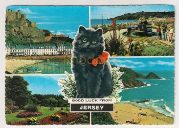 Channel Islands: Jersey. Lucky Black Cat, Good Luck From Jersey Multiview Postcard