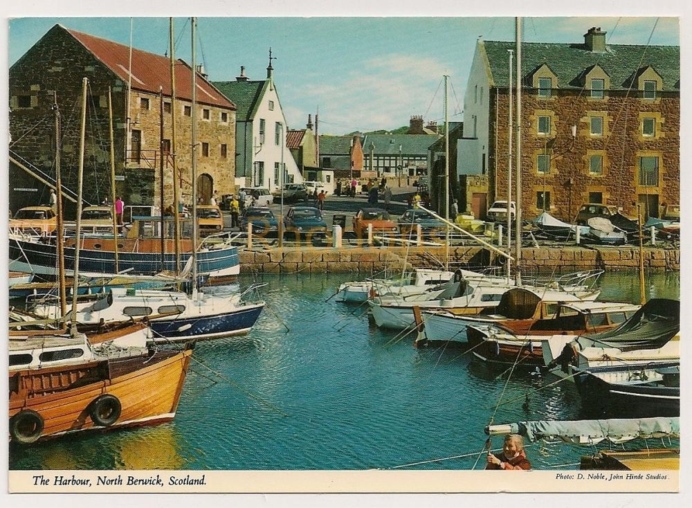 Scotland: East Lothian. The Harbour, North Berwick, Colour Photo Postcard
