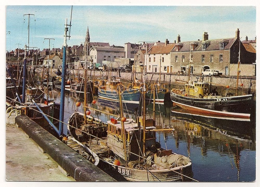 Scotland: Berwickshire. Fishing Boats At Eyemouth, Colour Photo Postcard