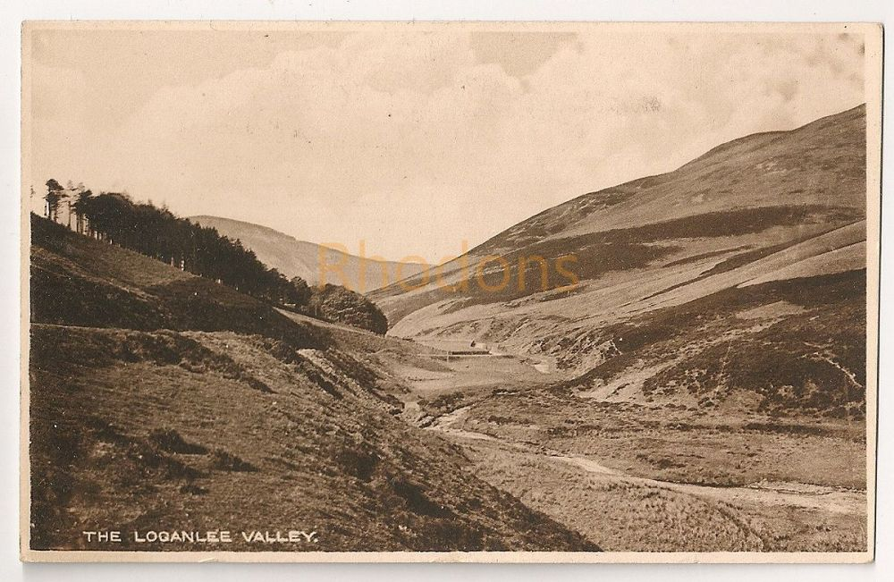 Scotland: Midlothian. The Loganlee Valley. Early 1900s Postcard