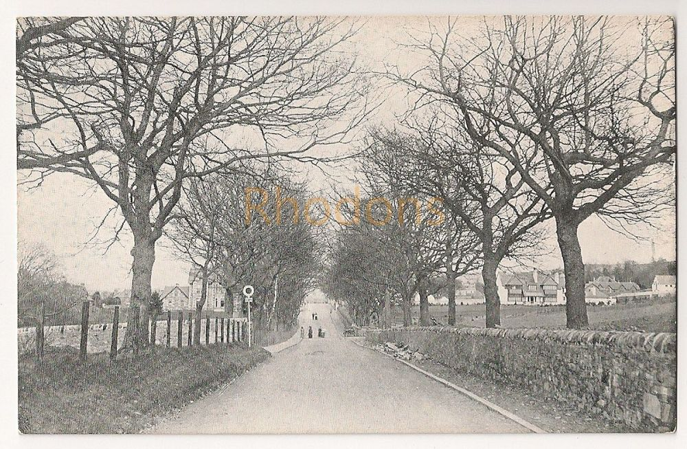 Scotland: Perth & Kinross. Approaching Aberfeldy From The Kenmore Road, Early 1900s Postcard