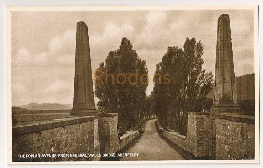Scotland: Perth & Kinross. The Poplar Avenue From General Wades Bridge, Aberfeldy. Early 1900s Postcard