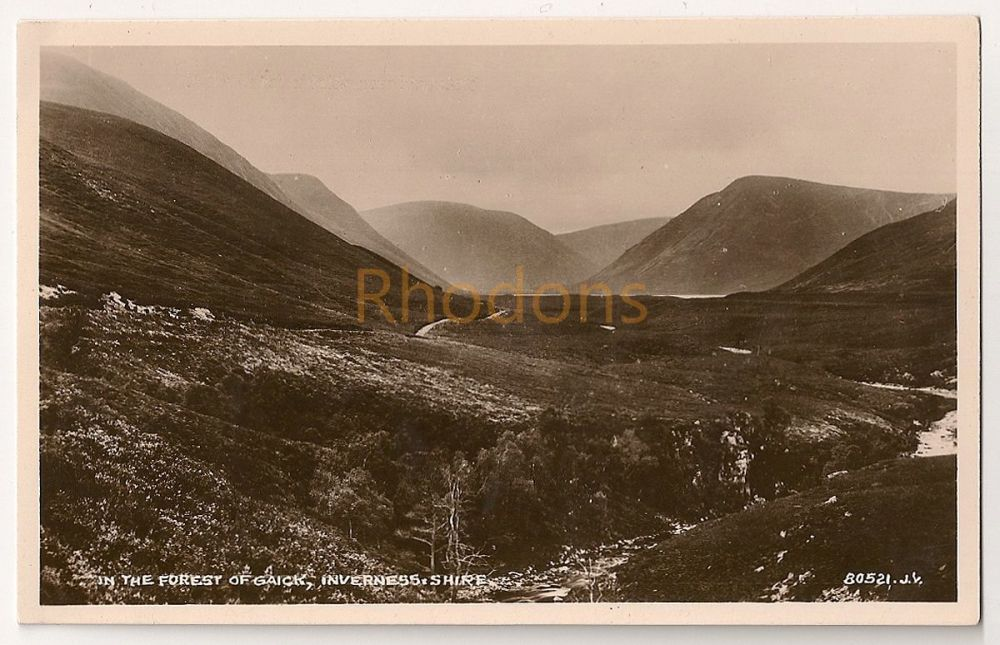 Scotland: Highlands, Inverness-shire. In The Forest Of Gaick. Real Photo Postcard