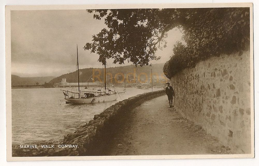 Wales: Conwy. Marine Walk. Early 1900s Real Bromide Photo Postcard