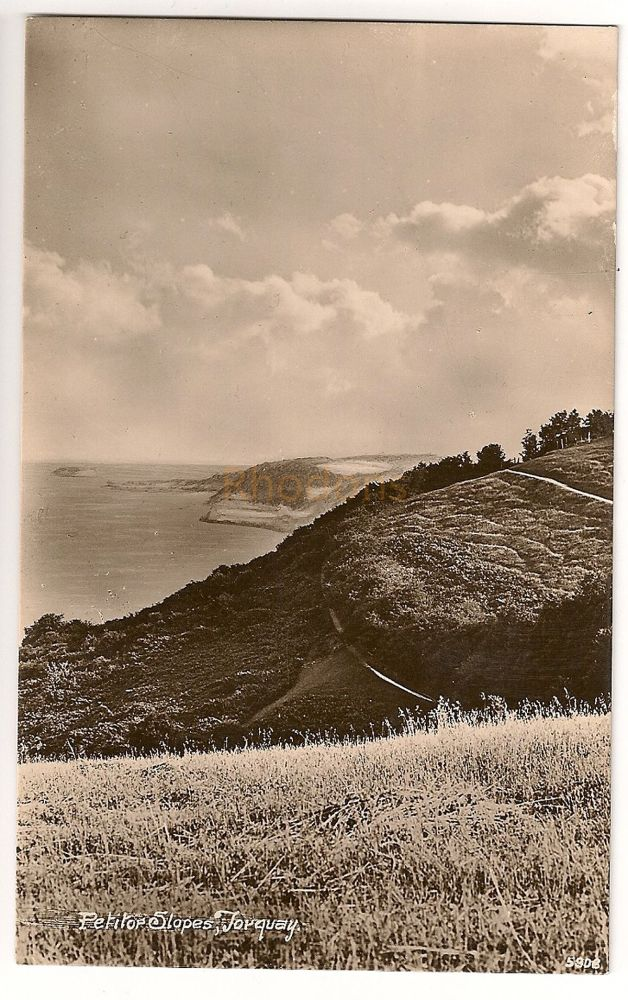 England: Devon. Torquay, Petitor Slopes. Real Photo Postcard