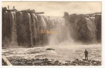Australasia, Oceanica: New Zealand. Wairua Falls, N Z. Early 1900s Postcard