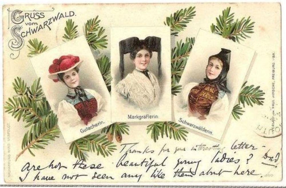 Gruß vom Schwarzwald.  Early 1900s Postcard
