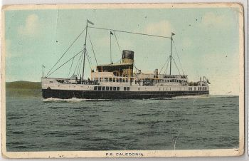 P S Caledonia. Early 1900s Shipping Postcard