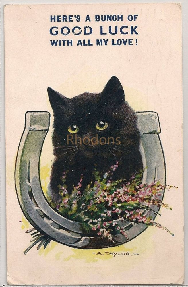 Black Cat, Horseshoe Good Luck, Early 1900s Postcard. Bamforth Witty Comic Series #2667