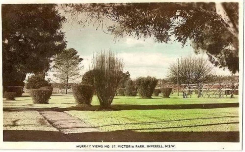 Victoria Park Inverell, NSW Australia Early 1900s Real Photo Postcard
