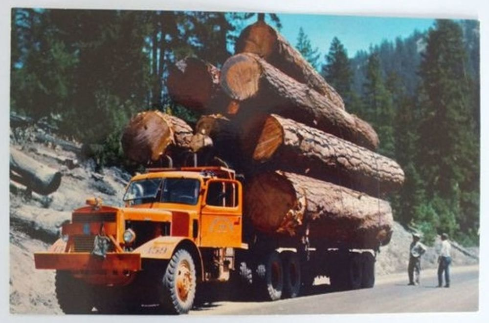 Logging Truck USA. 1970s, 1980s Colour Postcard