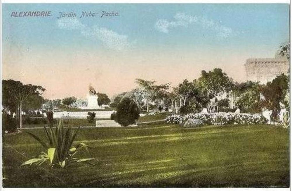 Egypt: Alexandria.Jardin Nubar Pacha. Early 1900s Postcard