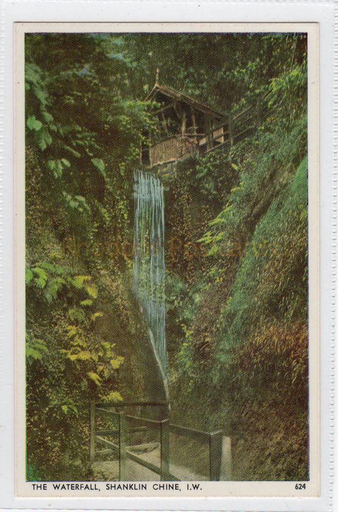 Isle of Wight: The Waterfall, Shanklin Chine  Postcard  (290)