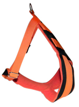 White Forest CaniCROSS Harness