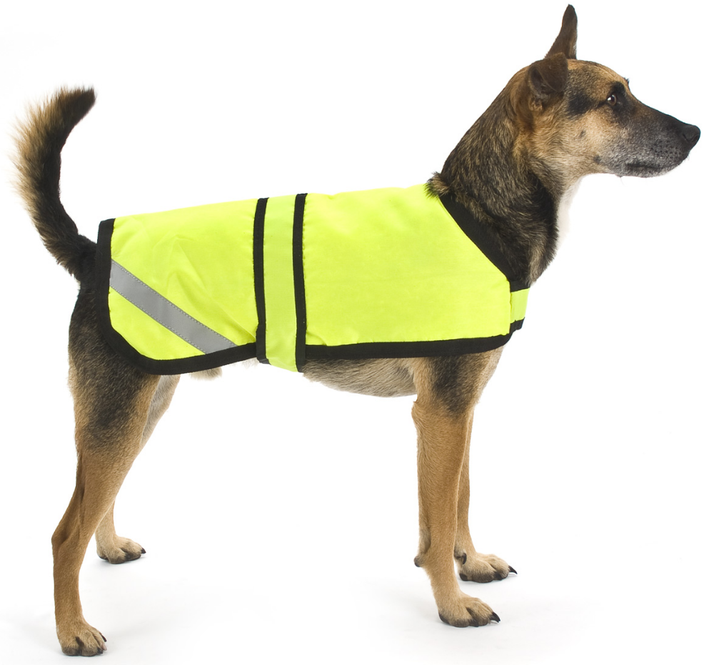 High Visibility Reflective Dog Coat
